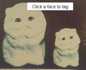 Alberta 0084 Itty Bitty Kittens