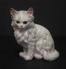 Duncan 0064 persian cat