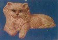 Kimple 0029 cat people pleaser