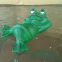 Mini Lying Frog