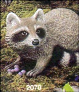 Scioto 2070 baby raccoon