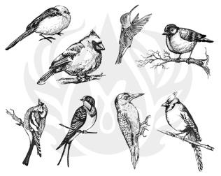 silkscreen pattern DSS108_Aviary_Small_Birds