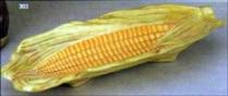 Duncan 0303 corn dish