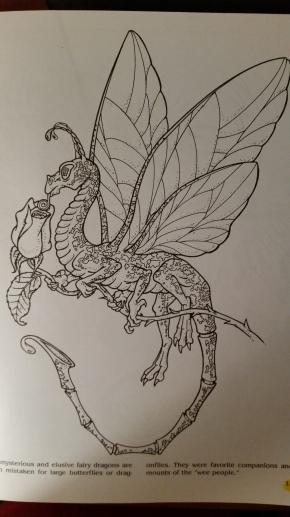 dragon drawing fairy dragon