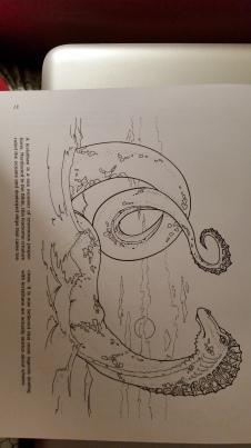 dragon drawing Leviathan (Biblical)