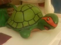 Ross 0542 turtle bank as Ninja