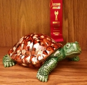 turtle Gail MCS17