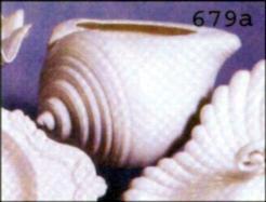 Duncan 0679a Trinidad Harbor Shell Planter