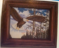 Kinzie 0001 frame with eagle picture