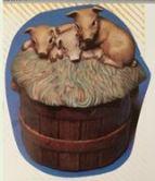 kimple 701 pig lid for basket