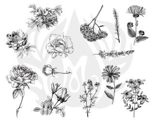 dss 112 flowers