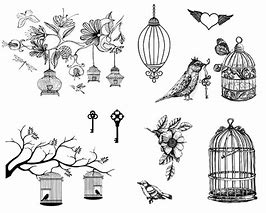 dss 141 birdcages
